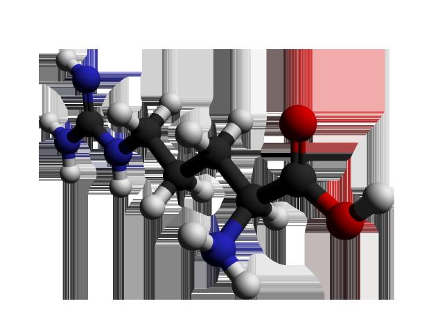 Titanium Gel - composizione - funziona - come si usa - ingredienti