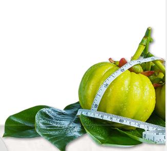 Garcinia Cambogia Veda - commenti - ingredienti - erboristeria - come si usa - composizione