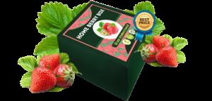 Home Berry Box - commenti - come si usa - erboristeria