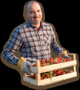 Home Berry Box - prezzo - Amazon - Aliexpress - dove si compra - farmacie