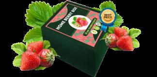Home Berry Box - prezzo - opinioni